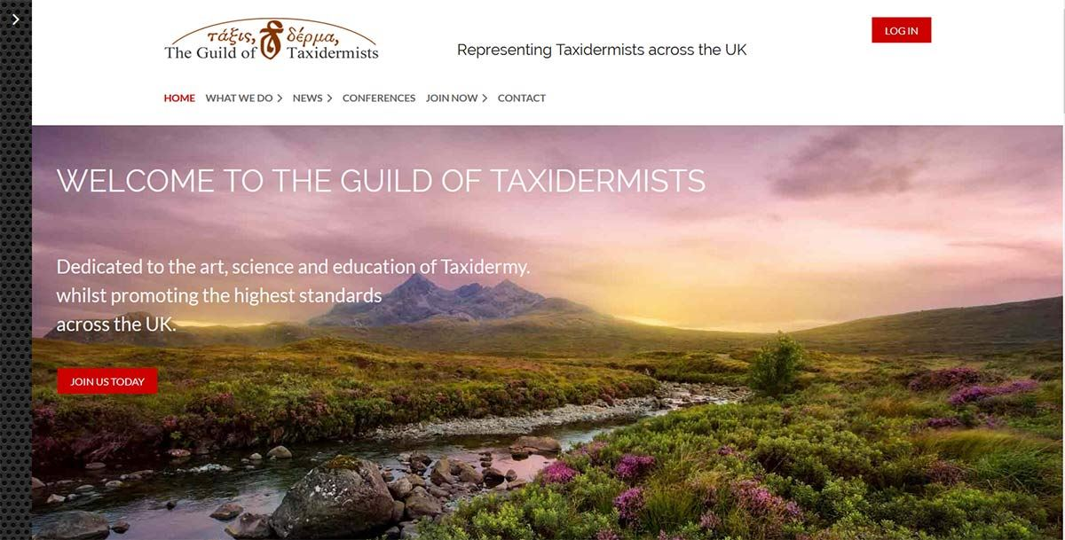 Taxidermist Website